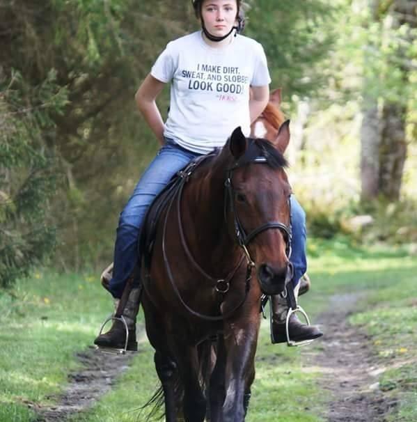 Cheval My horse faith  - Quarter Horse Femelle (21 ans)