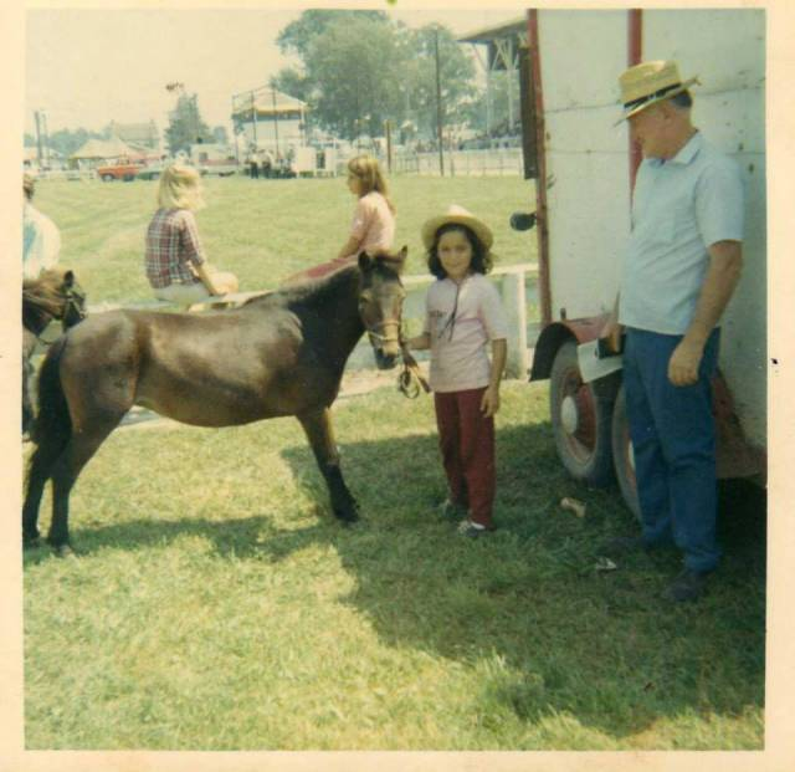 Poney Dolly - Shetland Femelle (7 ans)