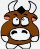 MaWi3 - éleveur de chevaux Horzer