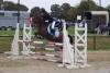 spiritboub - éleveur de chevaux Horzer