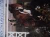 -jenifer60260- - éleveur de chevaux Horzer
