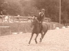 Agathe1000 - éleveur de chevaux Horzer