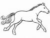 palta001 - éleveur de chevaux Horzer