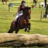 soso1402 - éleveur de chevaux Horzer