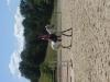 kiriholly74 - éleveur de chevaux Horzer