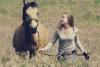 horssse - éleveur de chevaux Horzer