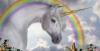 florette63 - éleveur de chevaux Horzer