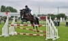 larobenoire - éleveur de chevaux Horzer