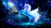 sarah7482 - éleveur de chevaux Horzer