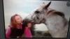 princesse282 - éleveur de chevaux Horzer