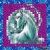 Lili38440 - éleveur de chevaux Horzer