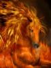 pet1415 - éleveur de chevaux Horzer