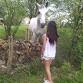 kassy77122007 - éleveur de chevaux Horzer