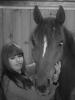 kimadoree - éleveur de chevaux Horzer