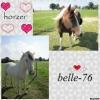belle-76 - éleveur de chevaux Horzer