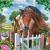 À la découverte des différentes races inconnues de chevaux/poneys