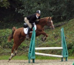 Cheval Vicky - Pur sang arabe Femelle (5 ans)