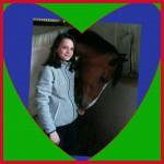 Cheval PT - Paint horse Mâle (10 ans)