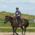 Cheval Chelsea - Paint horse Femelle (13 ans)