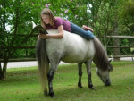 Cheval me and justice - Appaloosa Femelle (2 ans)