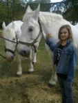 Cheval olympe lavesta et moi - Lipizzan Femelle (10 ans)