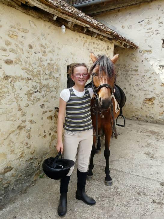 Cheval vikcy - Lipizzan Femelle (6 ans)
