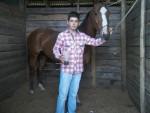 Cheval Fugitiva - Quarter Horse Femelle (4 ans)