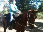 Ginger and my friend - Quarter Horse (7 ans)