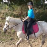 Cheval Ulka - Islandais Femelle (10 ans)
