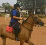Cheval Angel Of Darkness -  Femelle (5 ans)