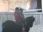 Poney Kinder et ma fille 5 -  Mâle (3 ans)