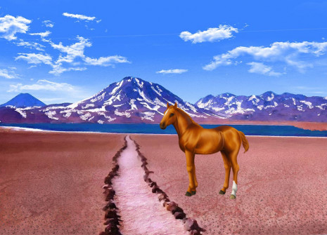 Un nouveau venu dans la Pochette surprise : adoptez le cheval chilien!